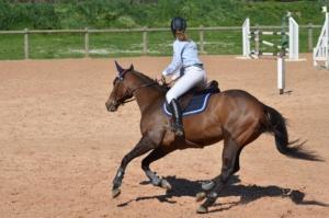 Reiterin auf einem Springtunier